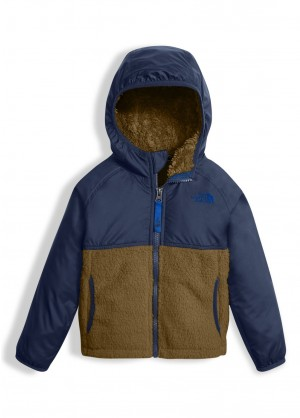 The North Face Toddler Boys Sherparazo Hoodie - WinterKids.com