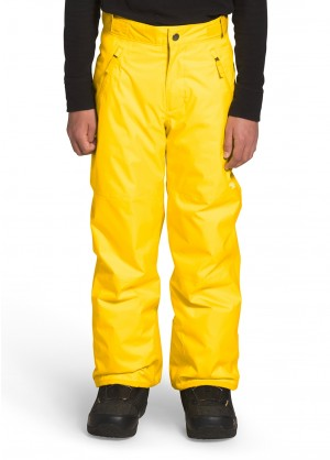 Boys Freedom Insulated Pant - Winterkids.com