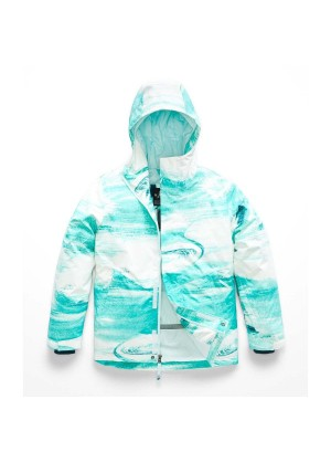 The North Face Girls Brianna Insulated Jacket - WinterKids.com