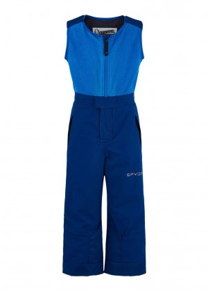 Spyder Toddler Expedition Pant - WinterKids.com